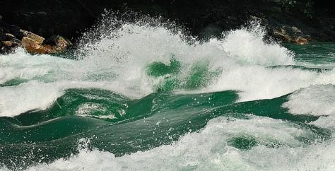 rapids-FINAL